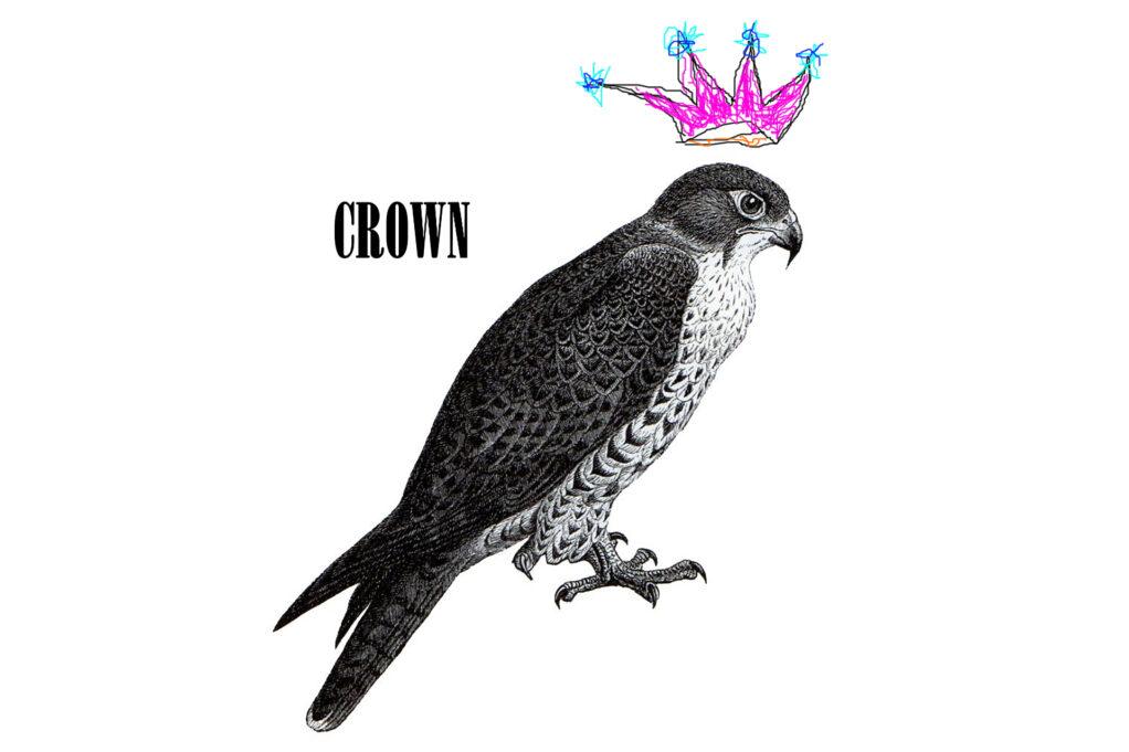 "brigid baker wholeproject ""Crown"""